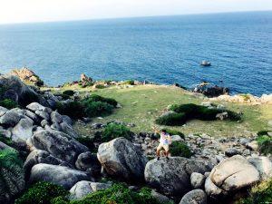Bỏ túi kinh nghiệm du lịch Cù Lao Xanh siêu chất